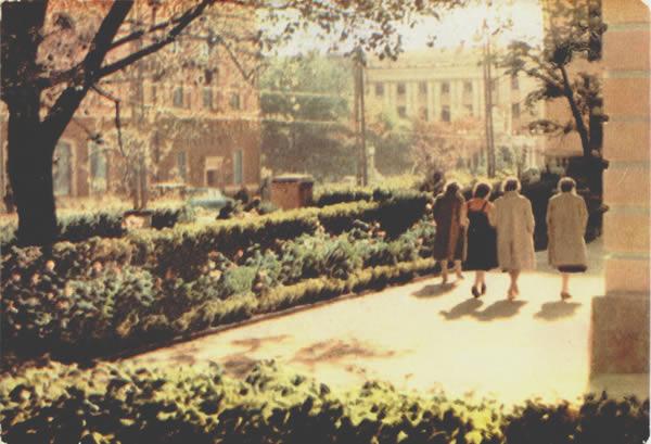 Проспект Ленина, 1965